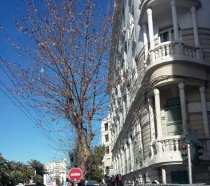 جزء من منطقة باساج تونس-بشار طافش