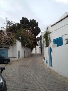 شوارع سيدي بو سعيد المميزة